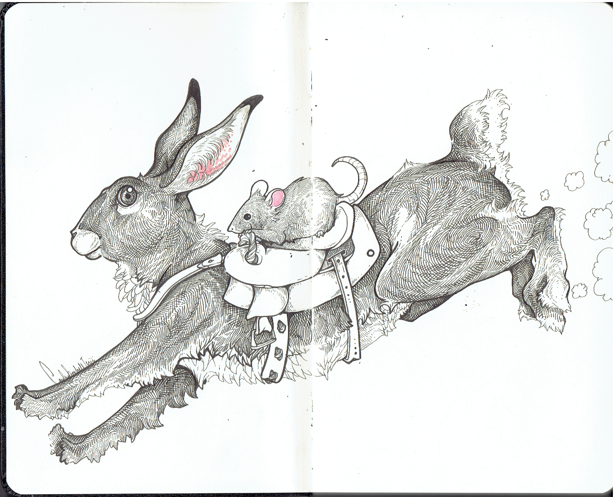 Moleskine Rabbit