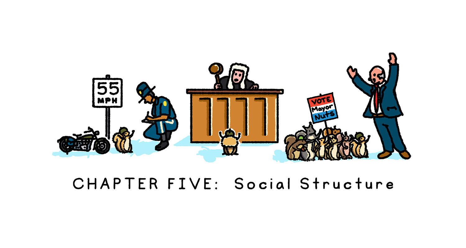Social Structure (for squirrels)