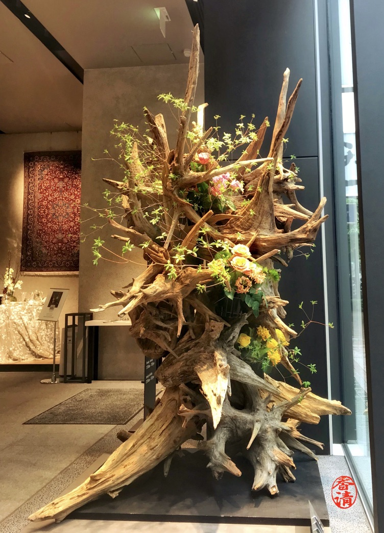 Ikebana window display