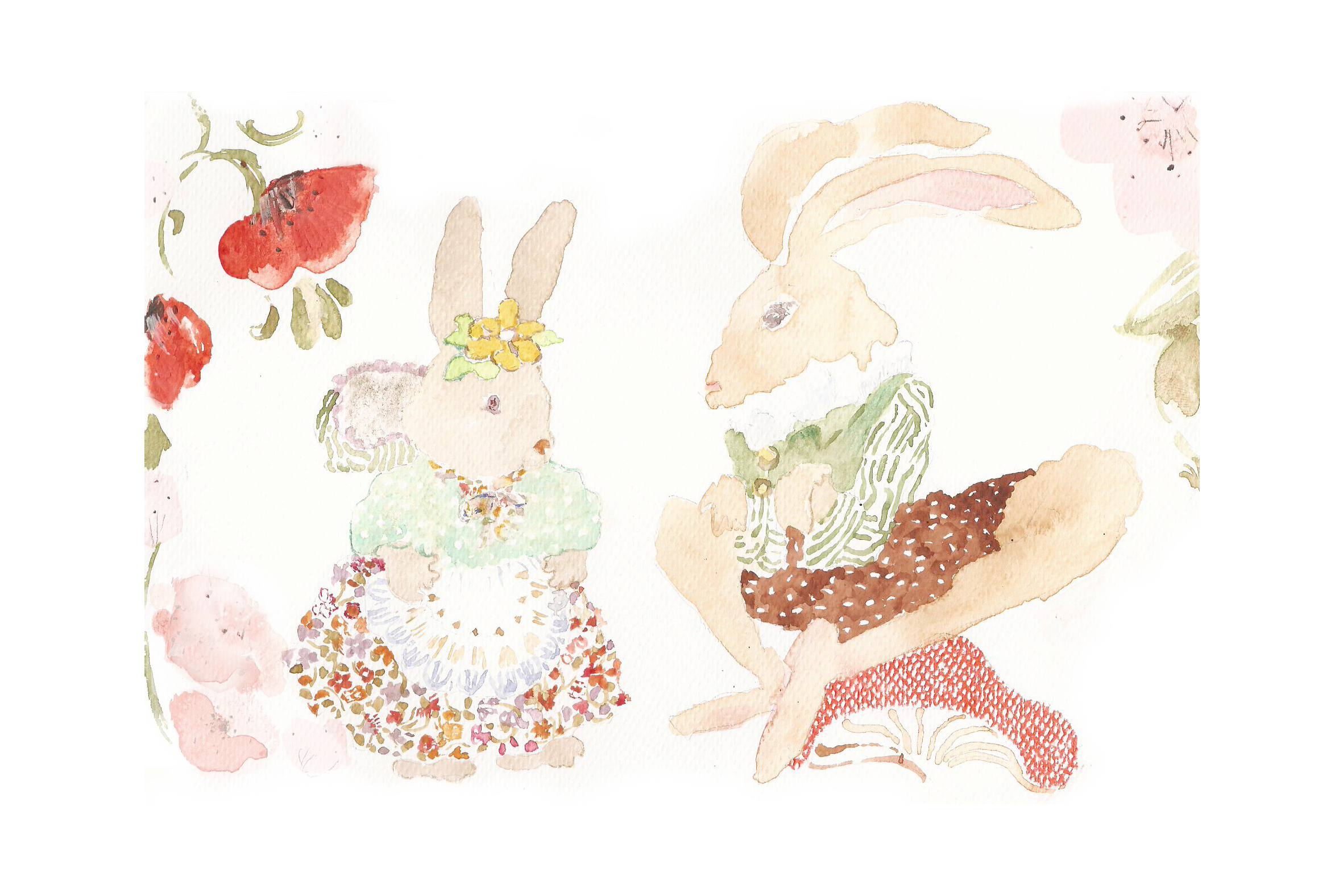 The hare and the rabbit