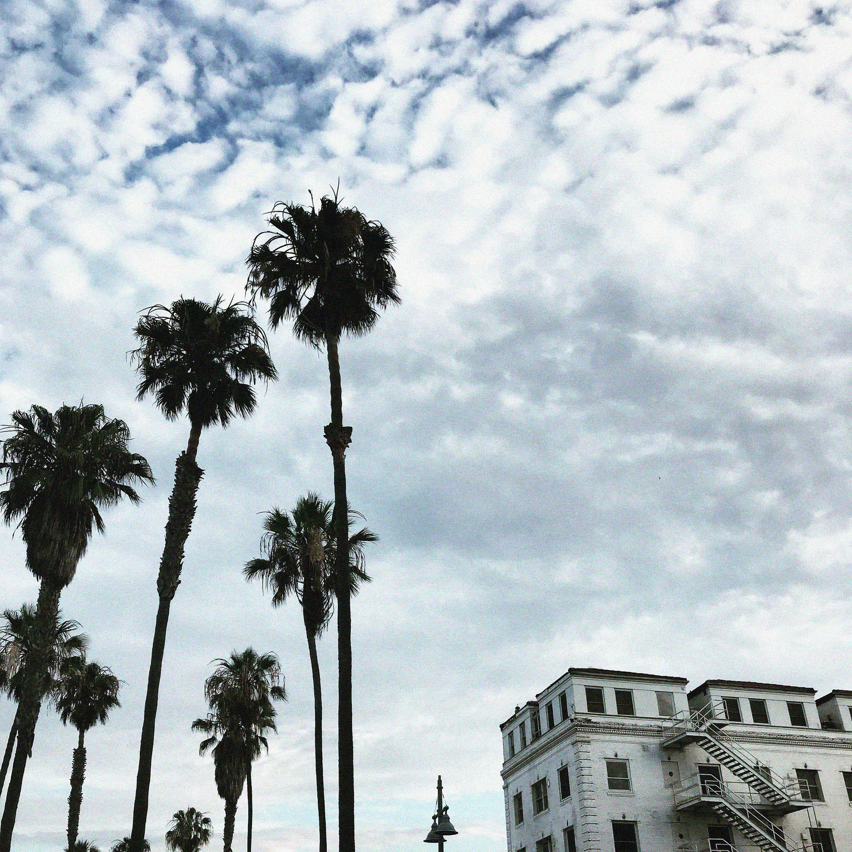 LA LIVING | visual journals