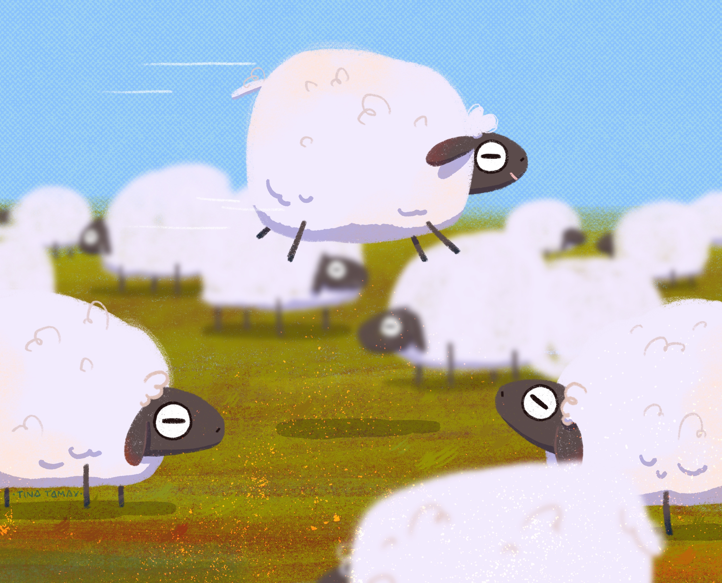 Sheep time