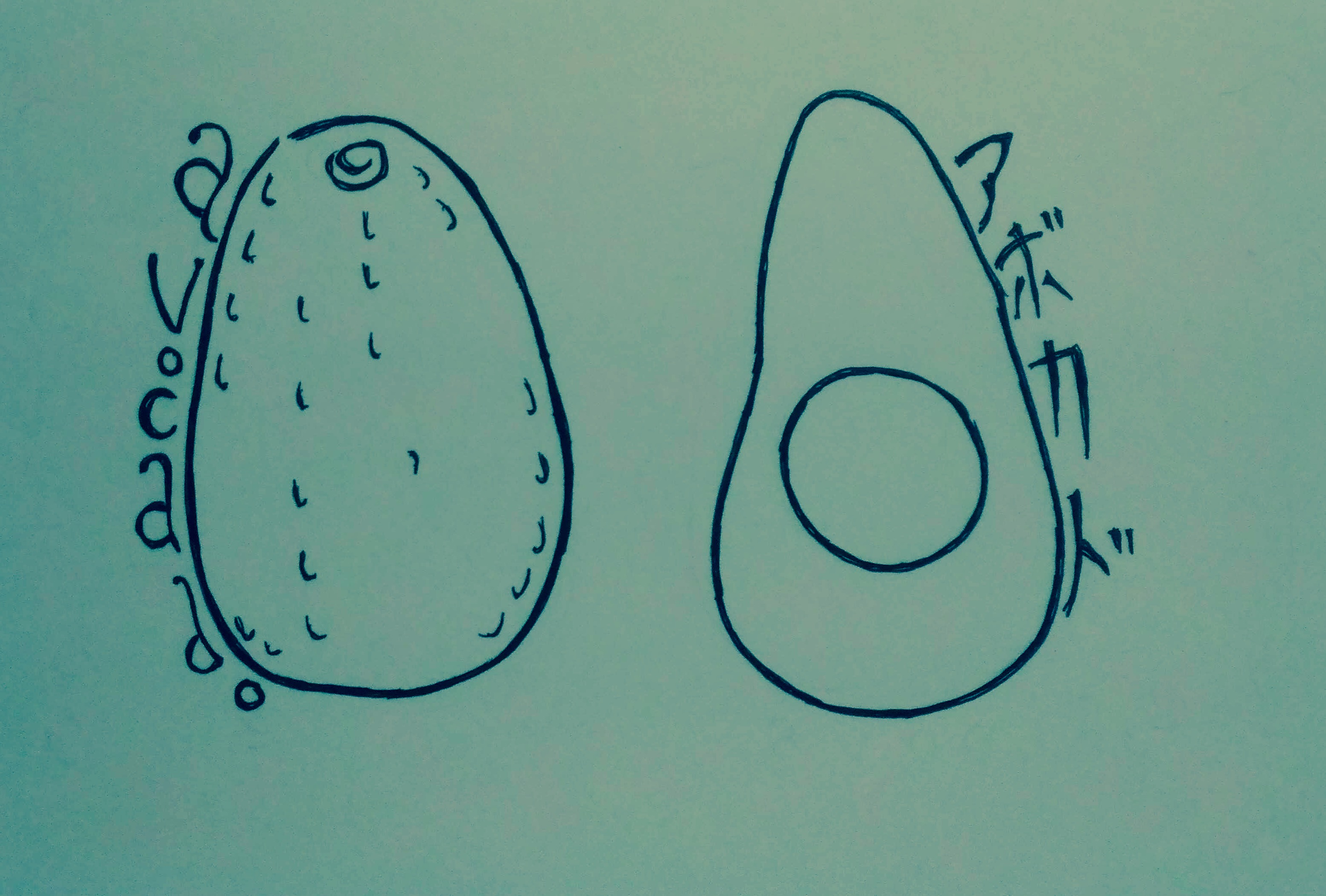 Food Sketches: Avocado