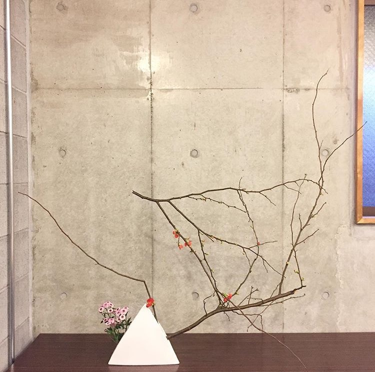 +my 2017 ikebana, pt.1