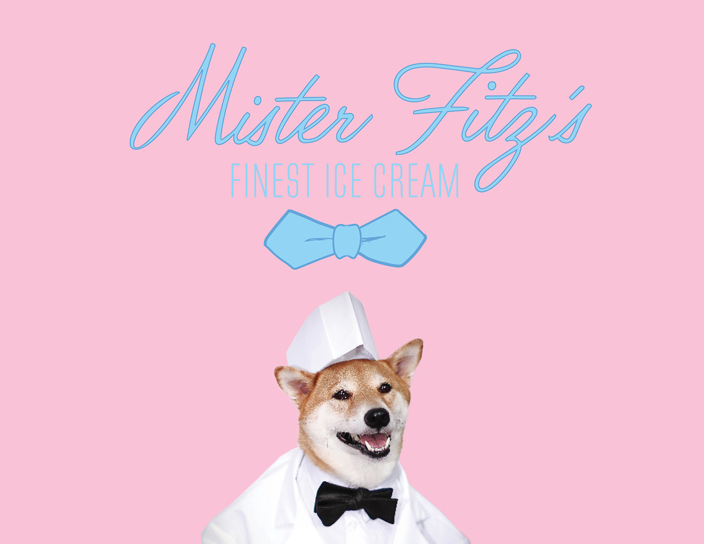 Mister Fitz's Finest Ice Cream Branding & Design