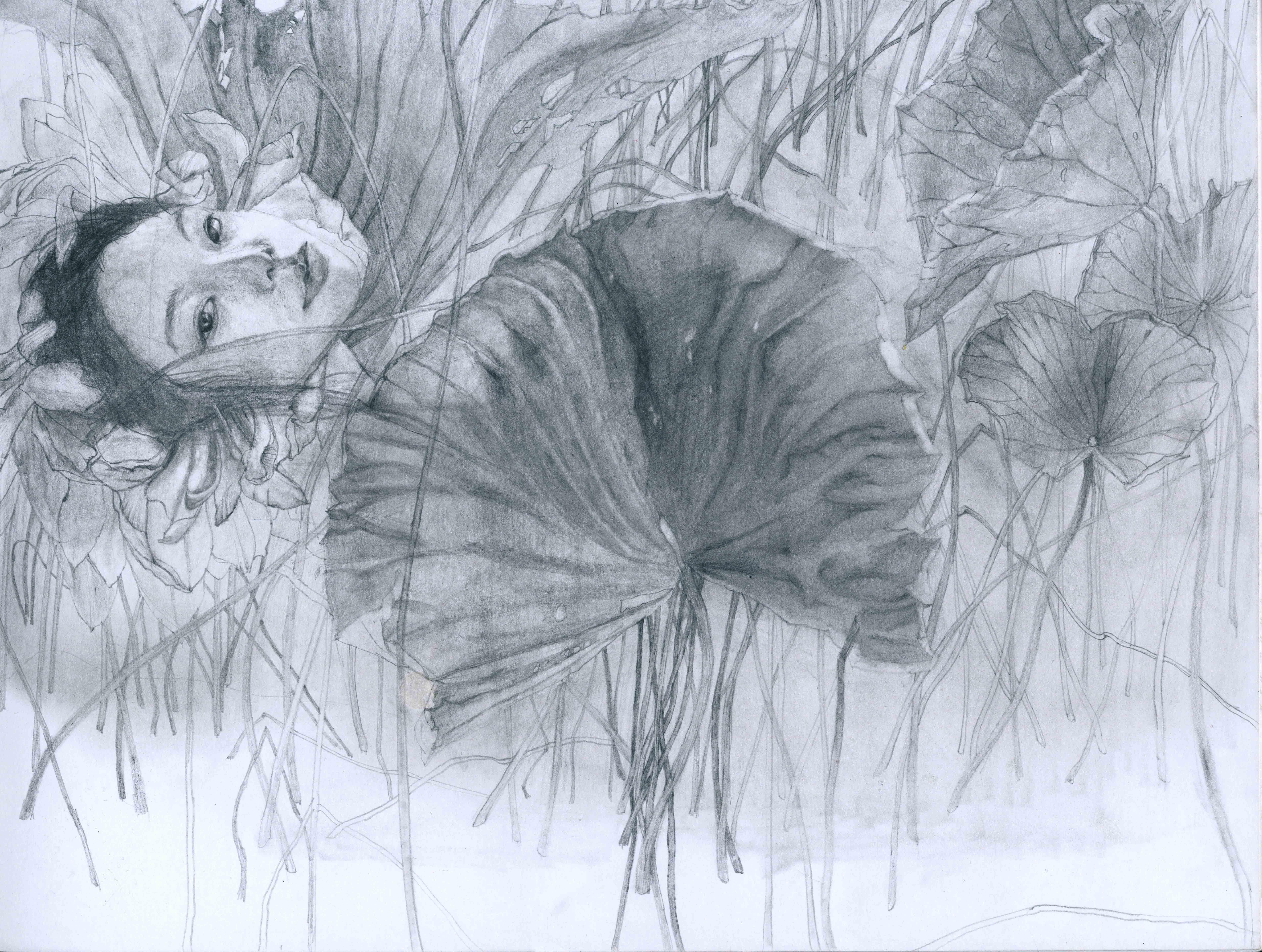植人14-sketch