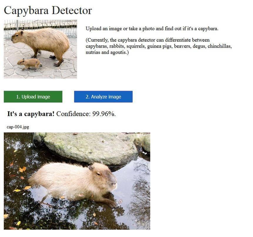 AI-driven Capybara Detector