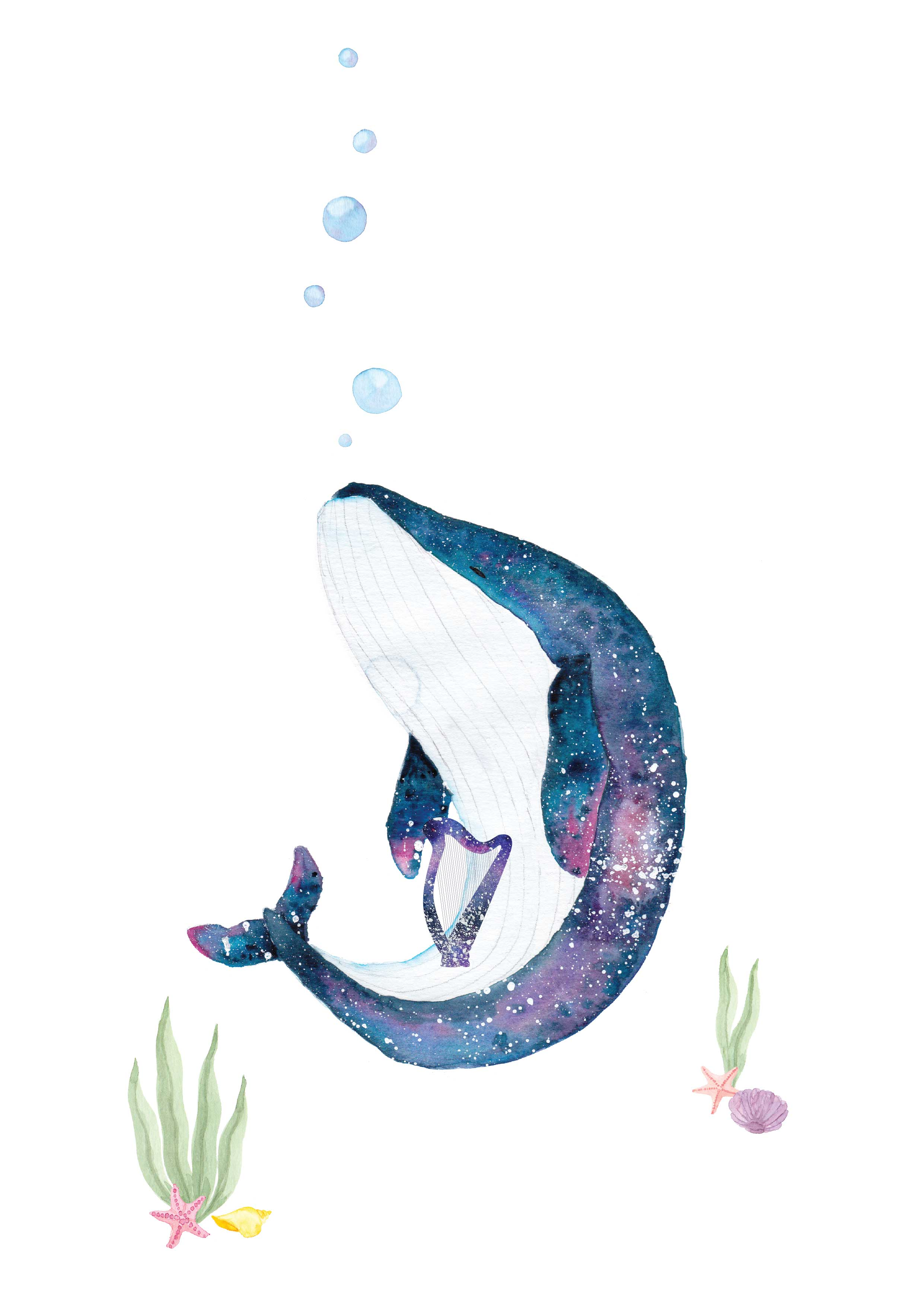 Stary Whales and Harp
