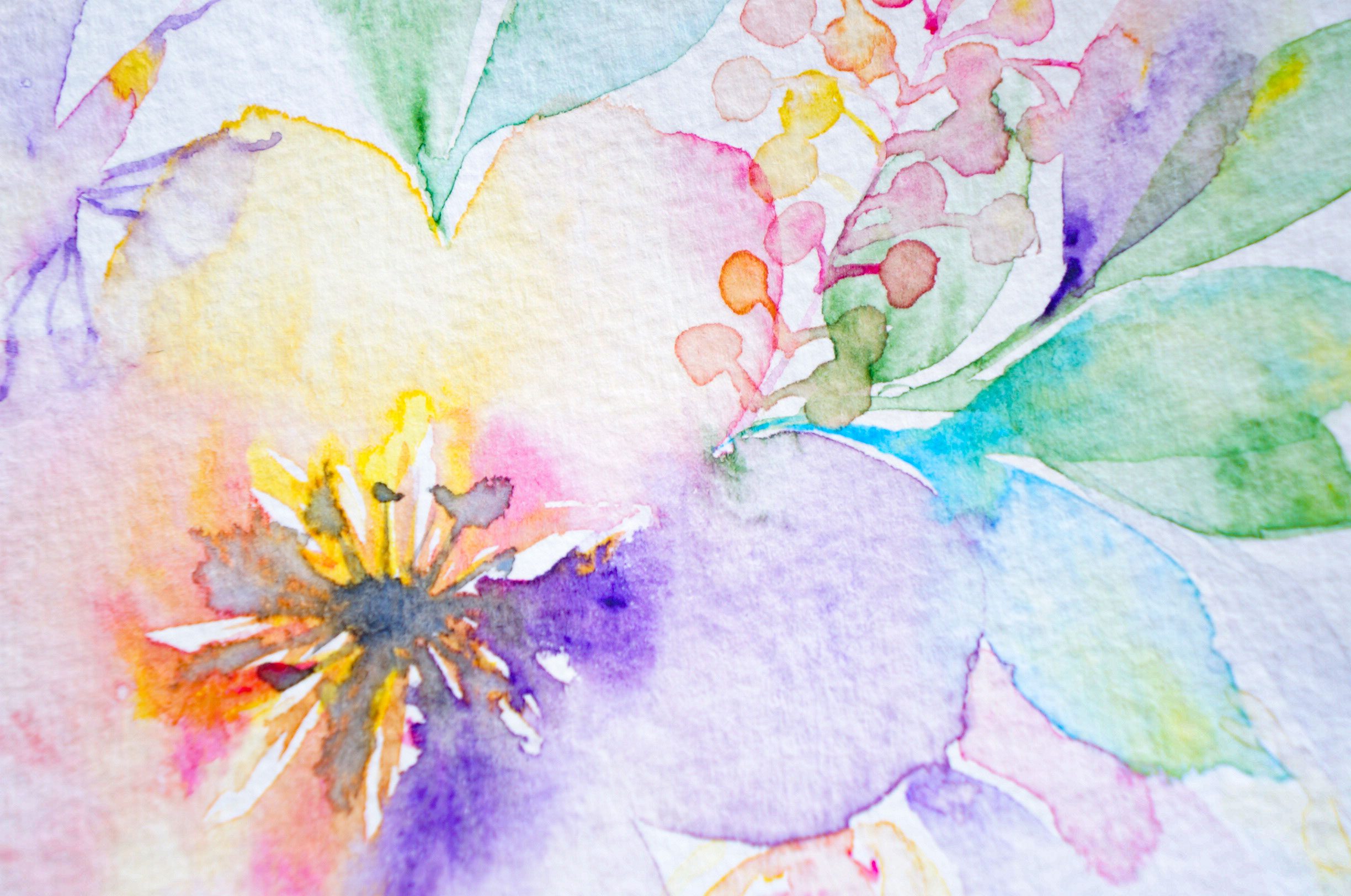 Watercolor Painting Rainbow Flowers